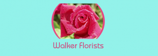 Ann Walker Florists