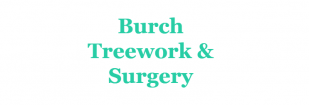 Burch Treework and Surgery