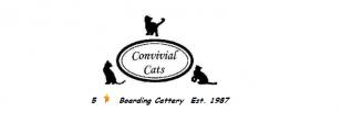Convivial Cats